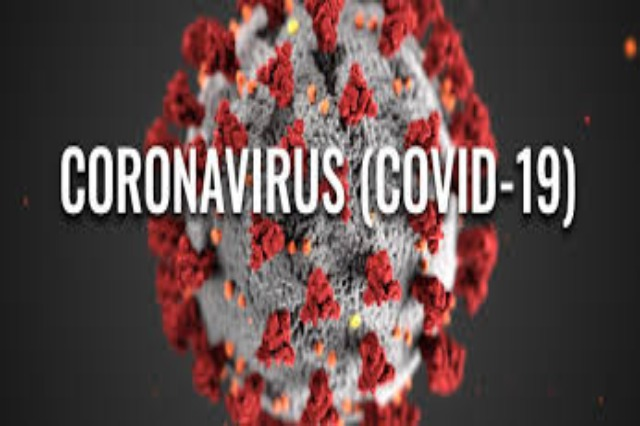 Academy of Sciences: The number of infected with Covid in Albania might be 600 thousand people