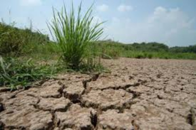 Eurostat: Climate change is adversely affecting agriculture in Albania as well