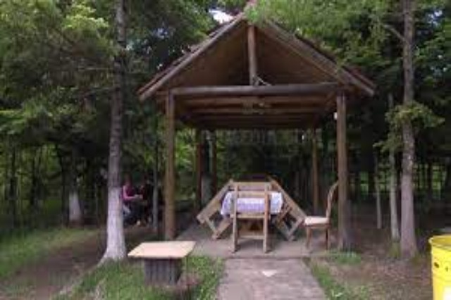 Fir of Hotova National Park