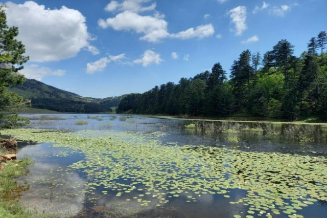Lac de Chêne, une autre destination de tourisme naturel à découvrir à Gramsh