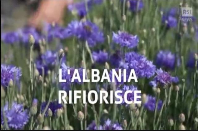 Rifiorisce l'Albania, La pandemia suscita effetti benefici sull'economia della nazione