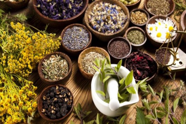 Interest in medicinal plants that are produced and cultivated in Albania is growing every year