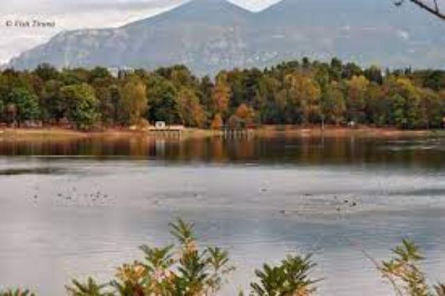 Parco di Lago artificiale, destinazione per tutte età