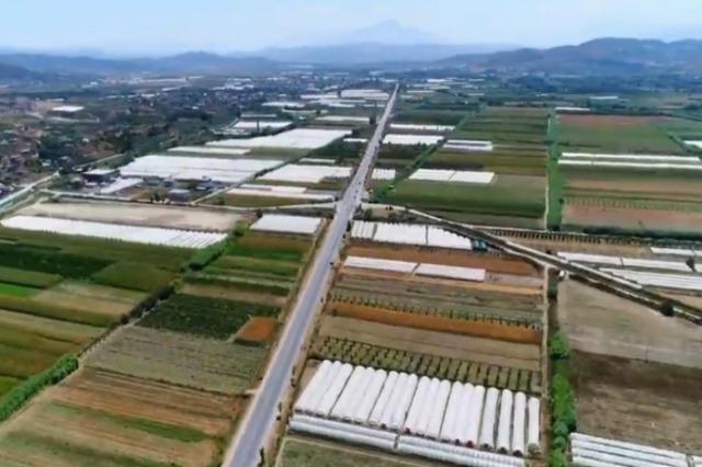 Die landwirtschaftlichen Flächen von Kafaraj , des Erfolgs im Export, der jedes Jahr wächst